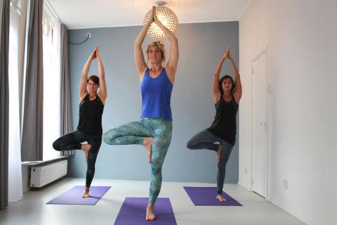 Hatha Yoga Wageningen